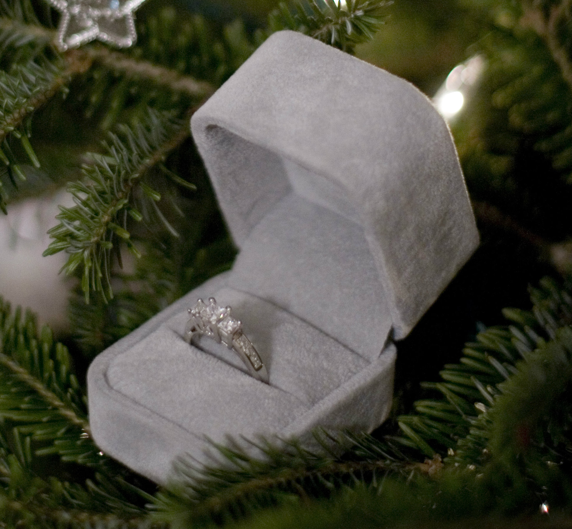 Have a Very Merry Proposal!